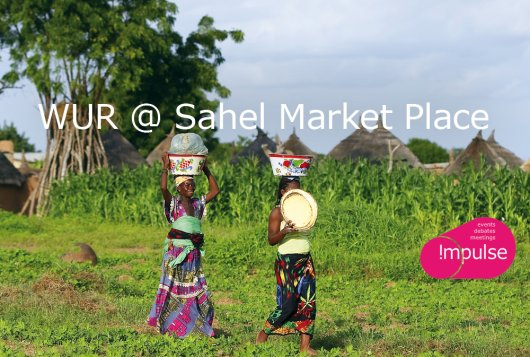 WUR @ Sahel Market Place