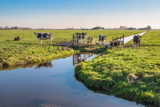 Agrarisch waterbeheer