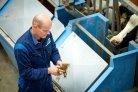 Additieven als mogelijkheid om methaanemissie in runderen te verlagen