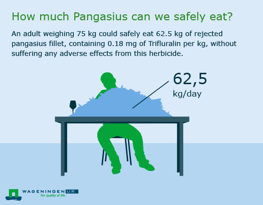 How much pangasius can we safely eat?