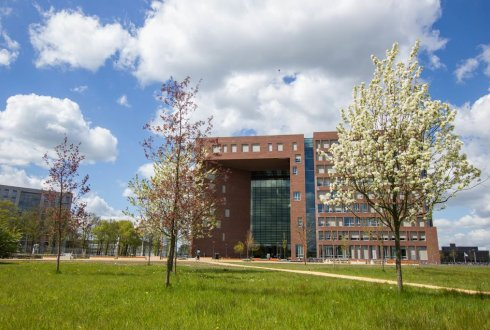 Wageningen back in Top 100 of THE international reputation ranking list