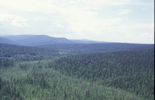 Boreal Biogeographical Region