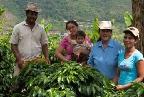 Implementation of an Integrated Water Management System towards a Climate Intelligent Coffee Sector in Colombia