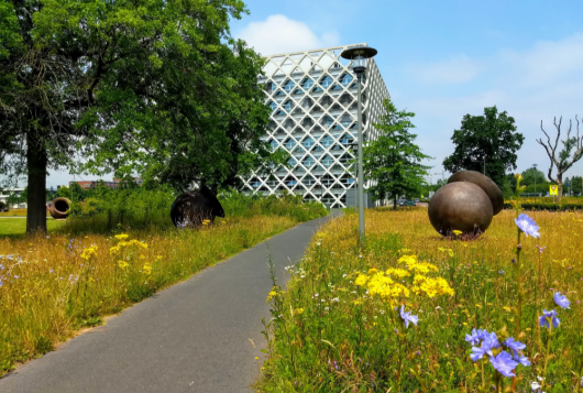 Shanghai Ranking 2019: WUR blijft beste universiteit in Landbouwwetenschappen