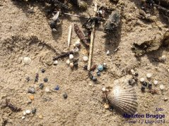 Photo 1: Small plastic debris on the tideline of Texel 12 May 2014 (© Maarten Brugge)
