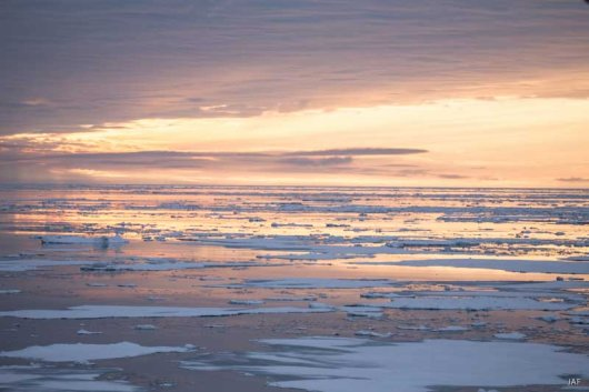 Once through the heavy ice, we entered an easy to sail area with the midnight sun glaring over the mirror-like water.