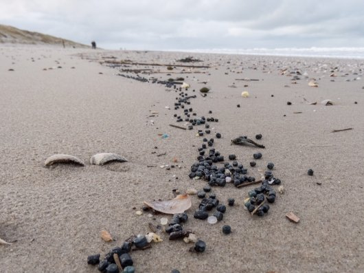 An endless line of plastic bio-beads in the floodmark on Texel (6 Jan 2018)