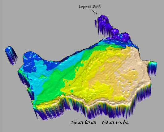 3D image of the Saba Bank with the Luymes Bank in the North East. Source: Erik Meesters