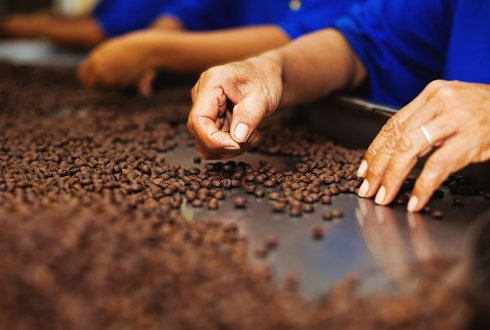 Wageningen UR will organise a side-event at The World Cocoa Conference