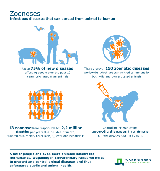 Zoonosen infographic DEF website.png
