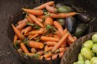 Towards microbial safety of fresh vegetables in Rwanda