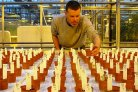 Vegetables on Mars within ten years