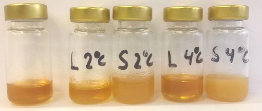 Oil and other fractions of the yellow mealworm. From left to right: crude oil, liquid fat at 2 degrees Celsius, solid fat at 2 degrees Celsius, liquid fat at 4 degrees Celsius, solid fat at 4 degrees Celsius.