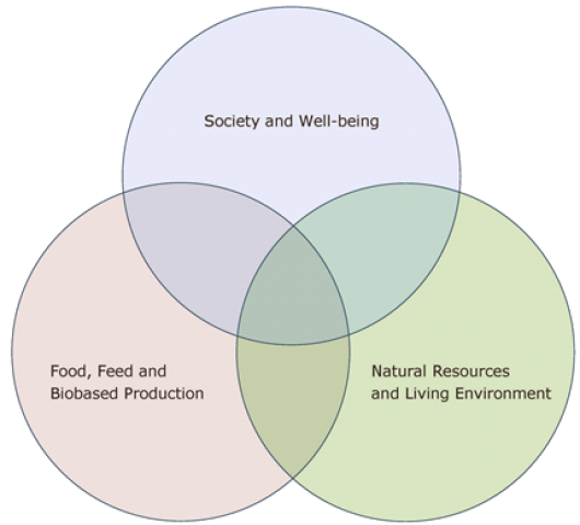 The three core areas in the domain of food and living environment