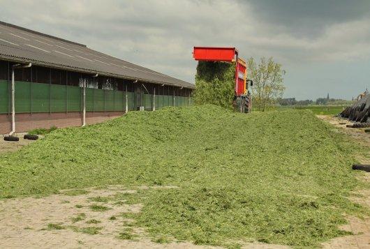 CVB actualiseert tabelwaarden voor grasproducten