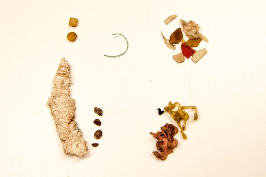 Quantities of latex rubber in stomachs are not always of spectacular size. This photographs shows a stomach content with a range of plastic debris, including two pre-production industrial pellets (top left), threadlike materials, foams, fragments and sheetlike plastics. The orange object at bottom right is a shrivelled piece of latex balloon. Although such a piece may not be the sole and direct cause of death, and probably passes the digestive system more rapidly than the plastics, negative impacts cannot be excluded.