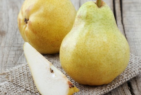 Research brings ideal pear storage cell within reach