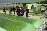 Microalgae Process Design: from cells to photobioreactors