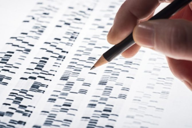 Web 72 DPI-shutterstock_251435335_dna_test.jpg