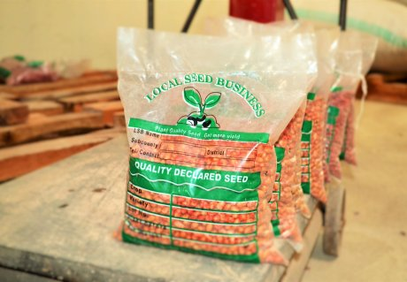 Enhancing reliable access to quality seed in Africa