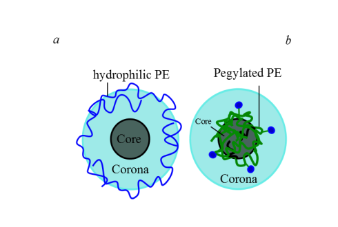 Co-assembly of an anionic surfactant with a (a) hydrophilic PE and (b) pegylated PE. In (a) the PE is at the periphery of the corona while in (b) the PE is located inside the core of the micelle.
