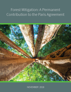 Thumbnail-Forest-Mitigation-a-Permanent-Contribution-to-the-Paris-Agreement-1.png