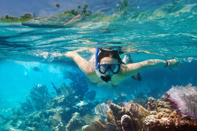 Scientists from Wageningen University & Research study the effects of sunscreen on coral health and try to develop less harmful bio-inspired sunscreen, made from natural sources. Photo: Shutterstock