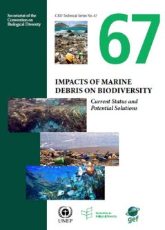 Impacts of Marine Debris on Biodiversity: Current Status and Potential Solutions