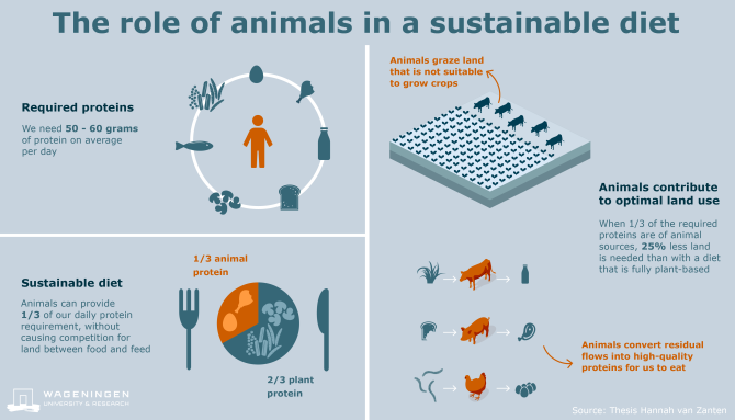 Click on the infographic to read the article 'Defining a land boundary for sustainable livestock consumption'