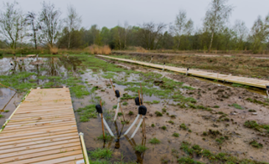 Test site for the newly developed submerged tubular system to generate plant electricity in Brabant. (Photo: Wild Frontiers)
