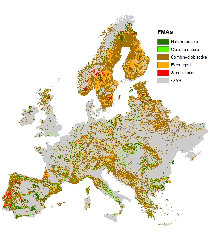 Map offers strategic vision for managing Europe\'s forests - WUR