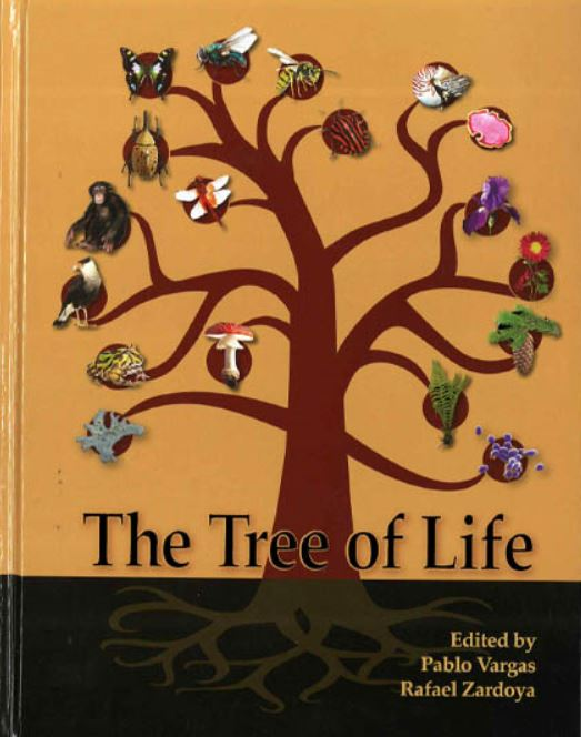 Book_cover_tree.JPG