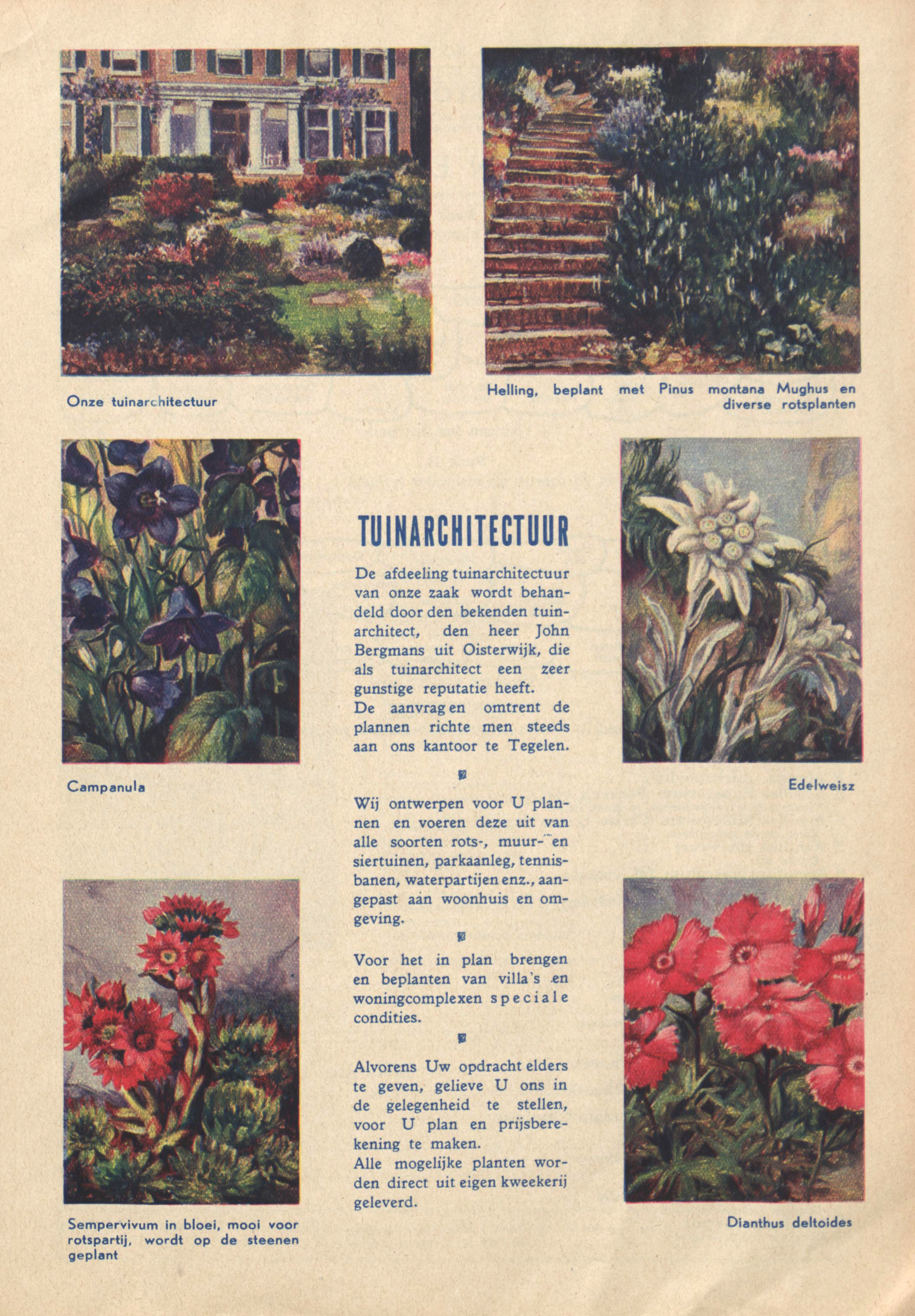 Page from a nursery catalogue of J.H. Faassen-Hekkens, 1934-1935 (WUR Library, Special Collections, BOX E00104)