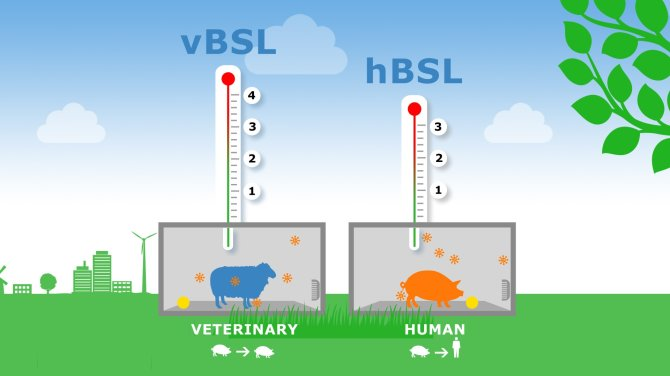 Our high-containment unit (HCU) operates under human Biosafety Level 3 (BSL 3) and veterinary Biosafety Level 4 (BSL 4)
