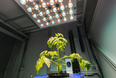 The Netherlands Plant Eco-phenotyping Centre: NPEC