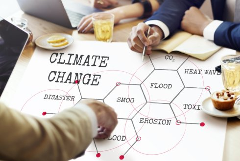 Climate information services