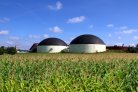 SYSTEMIC: Circular solutions for biowaste and manure