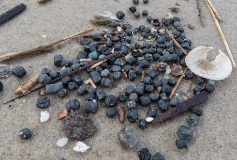 Plastic bio-beads beached on Texel