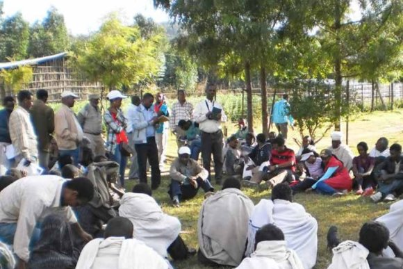 Successful 'Theory of Change' workshop in Ethiopia
