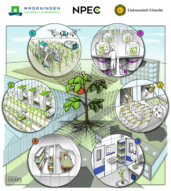 Artist impression of NPEC (click to enlarge)