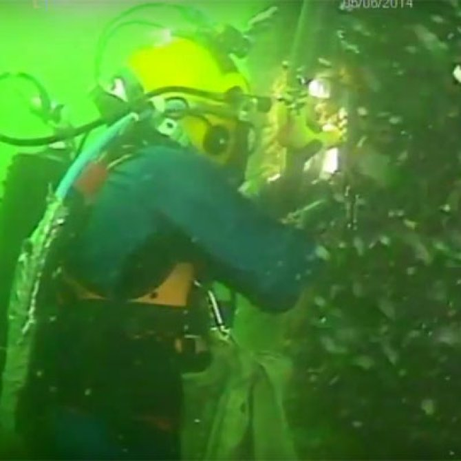 What grows underwater on gas platforms in the North Sea? Joop Coolen takes samples with his underwater airlift sampler and explains in this short film (Dutch) what he sees.