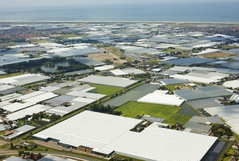 Greenport Westland-Oostland, Quality and production
