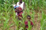 Photo Ken Giller, Farmer and children in her maize field with a substantial yield gap